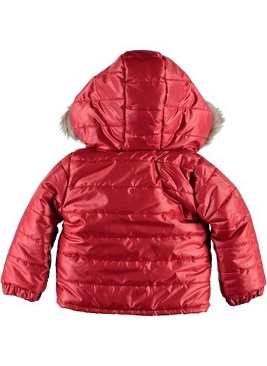 Locopop Mont Kırmızı
